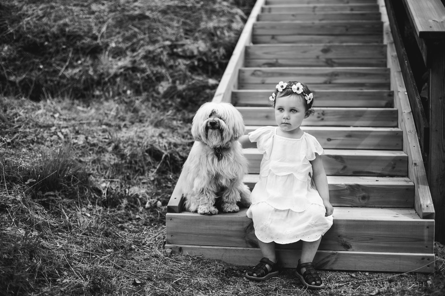Little-girl-and-her-dog-at-summer-house.jpg
