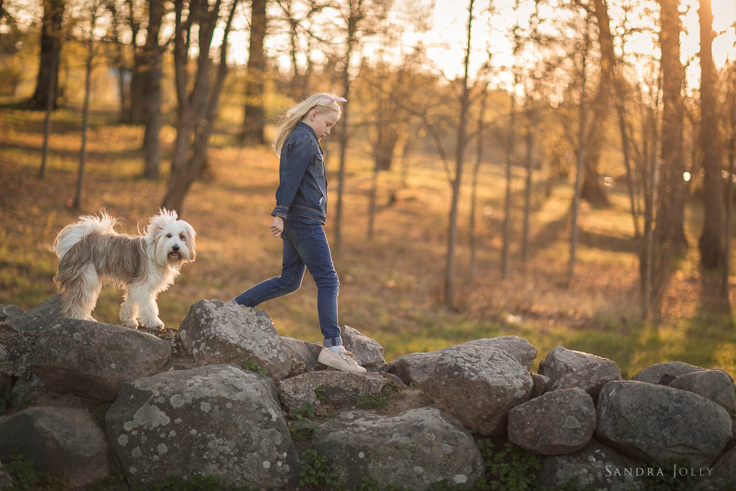 girl-and-dog-on-stone-wall-by-stockholm-family-photographer-sandra-jolly.jpg