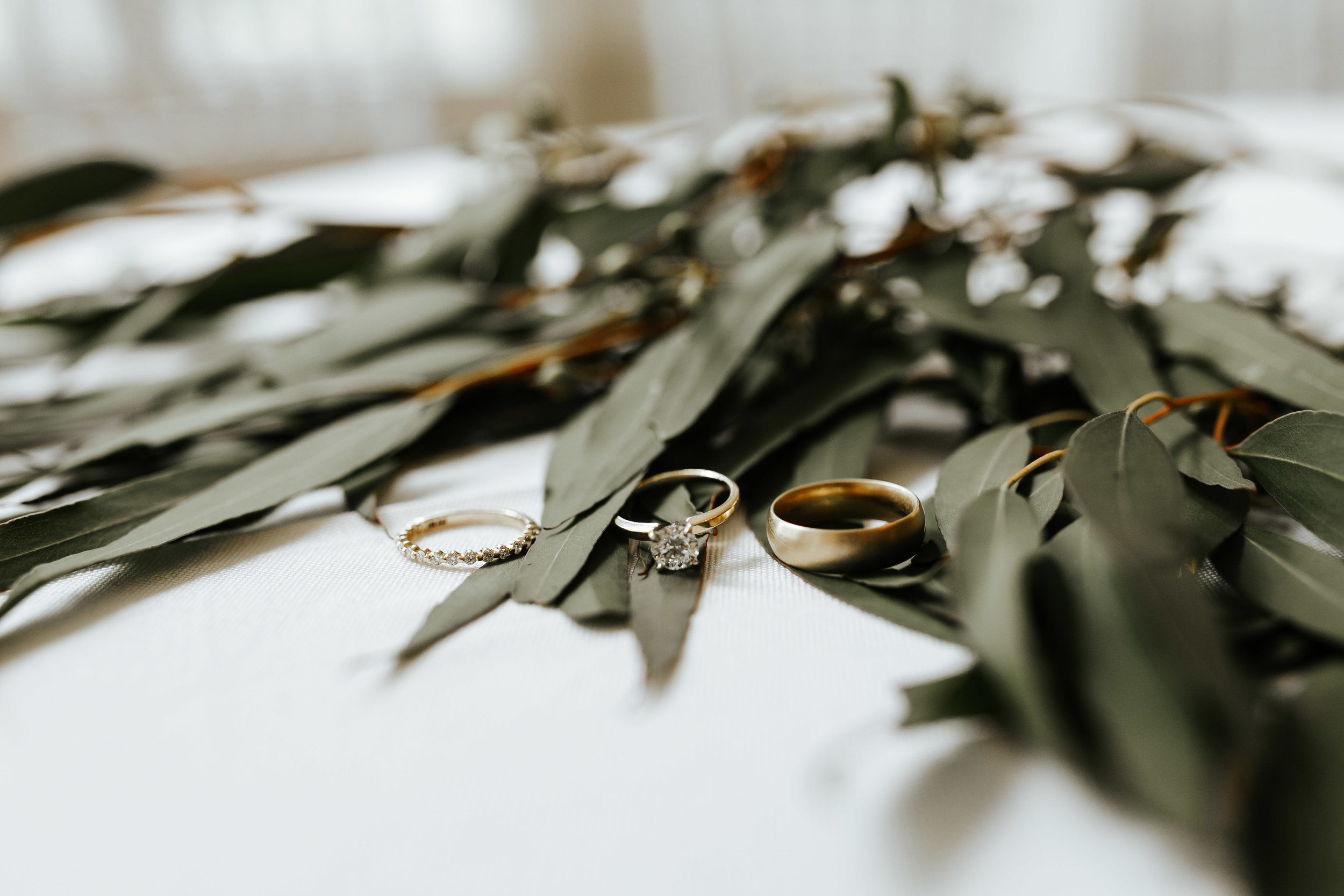 michellebrandonwedding-2.jpg
