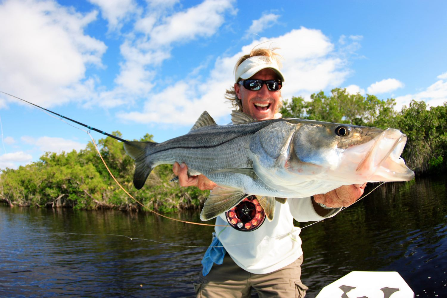 everglades-snook-8.jpg