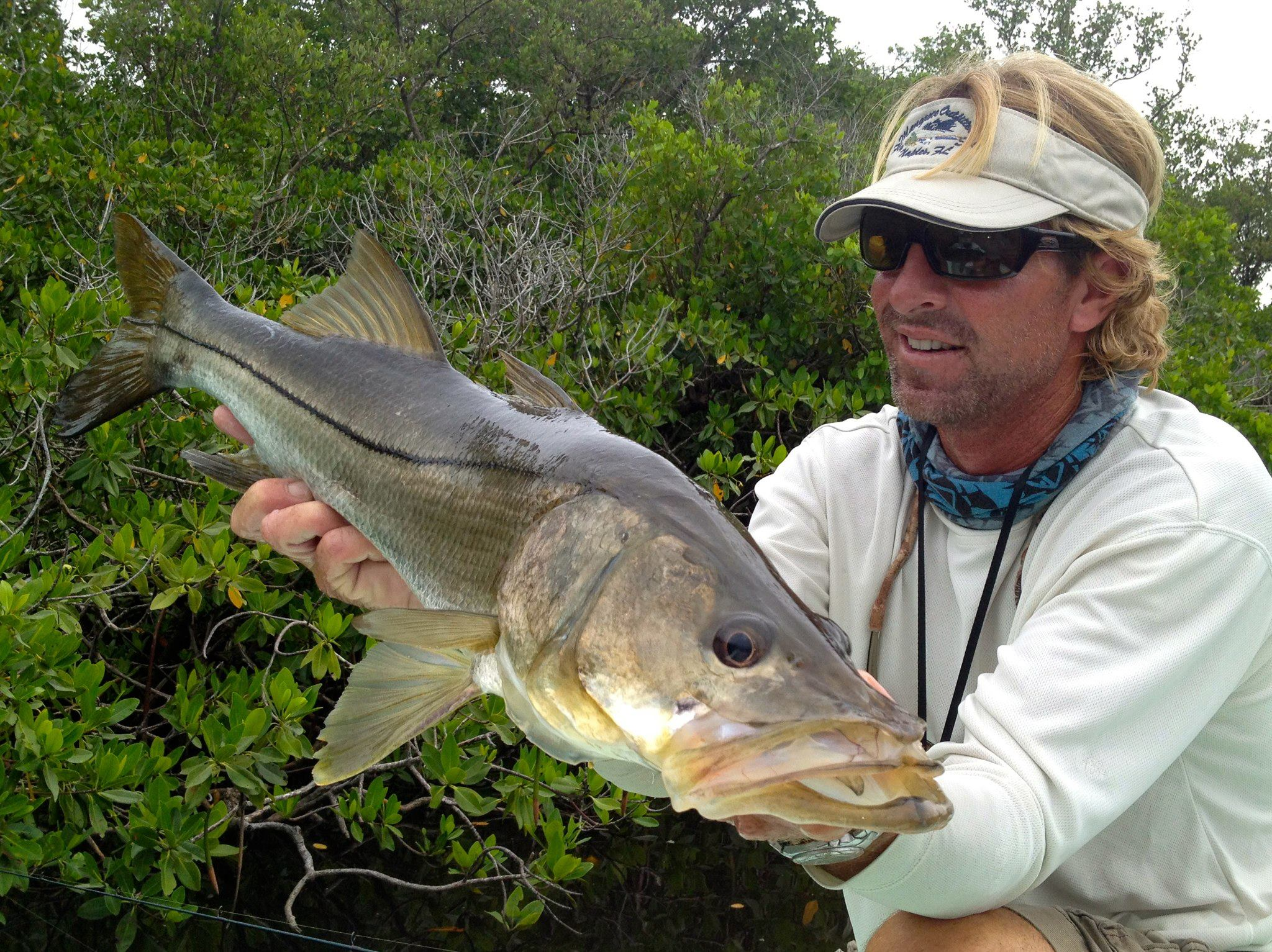 everglades-snook-6.jpg