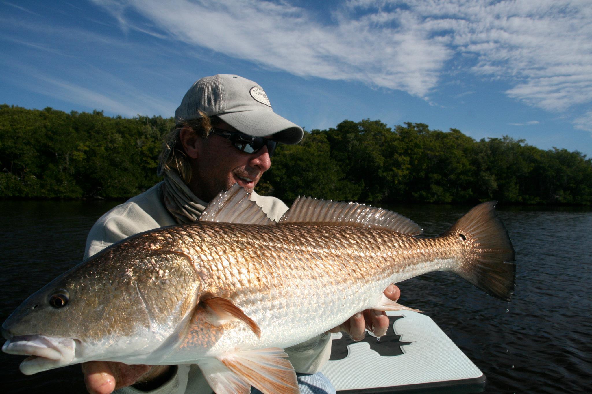 everglades-redfish-8.jpg