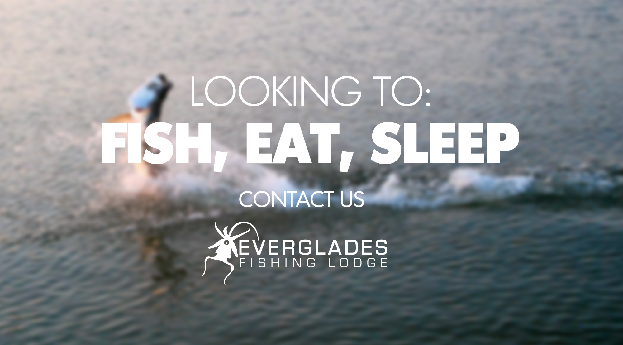 fish-eat-sleep-tarpon.jpg