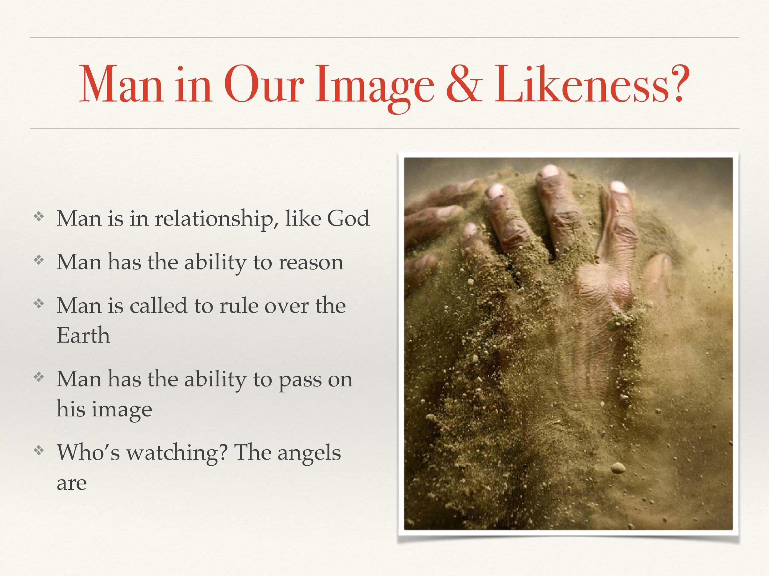 Image Series Genesis 1-3-page-019.jpg