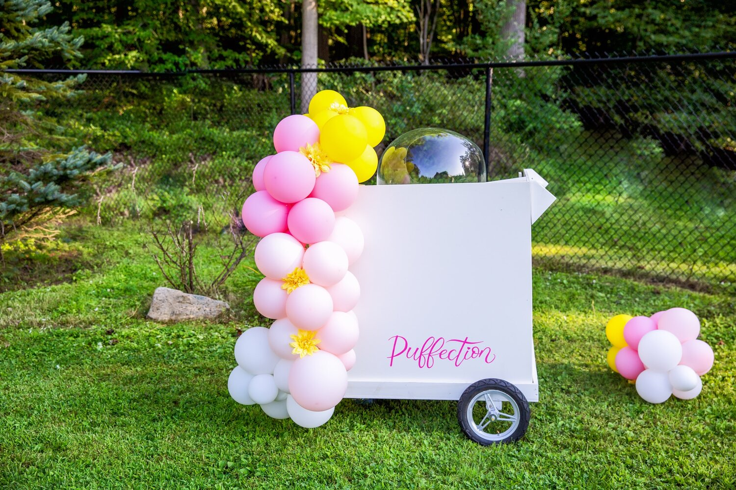 THE perfect addition to any kid's event are concession stand food carts. Tasha of All About Play brought her Puffection cart to give the kids a taste of her organic lemon cotton candy.