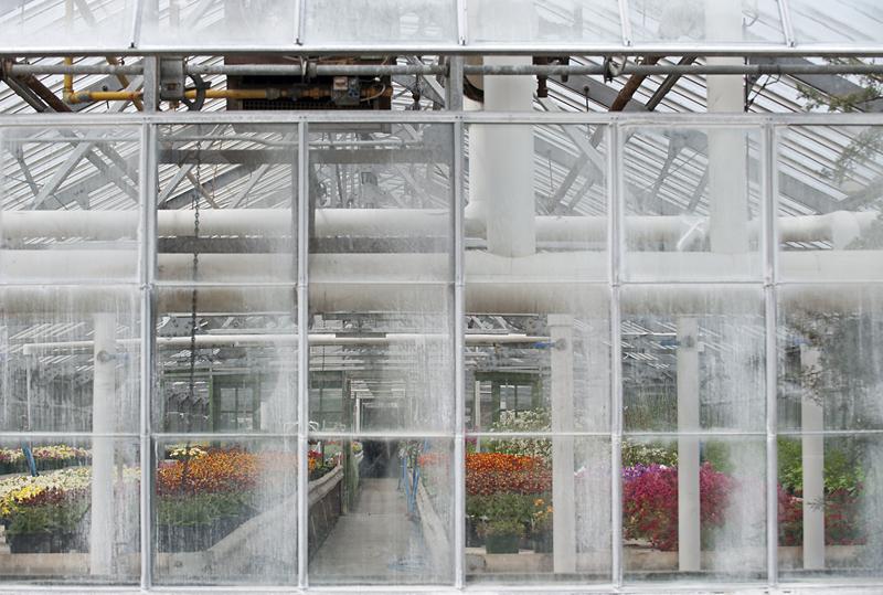 greenhousesm.jpg