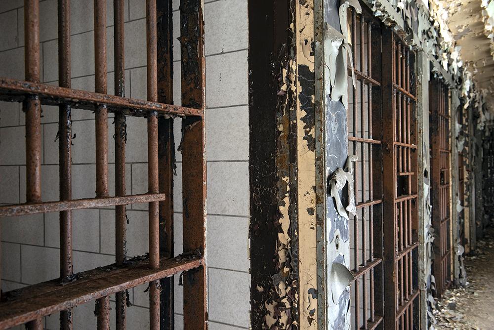 AEvans cell rustsm.jpg