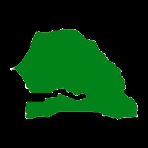 Senegal Green.png