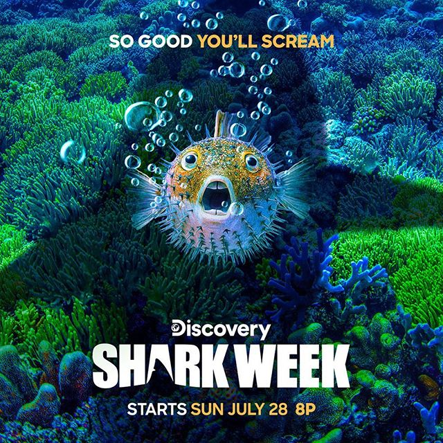 It's the most wonderful time of the year!! Tonight @sharkweek on @discovery