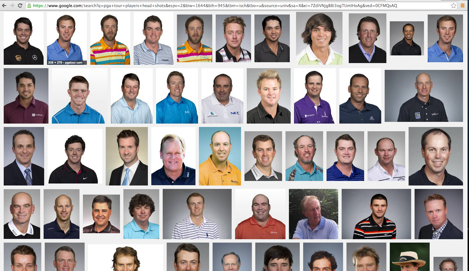 PGA Tour Head Shots