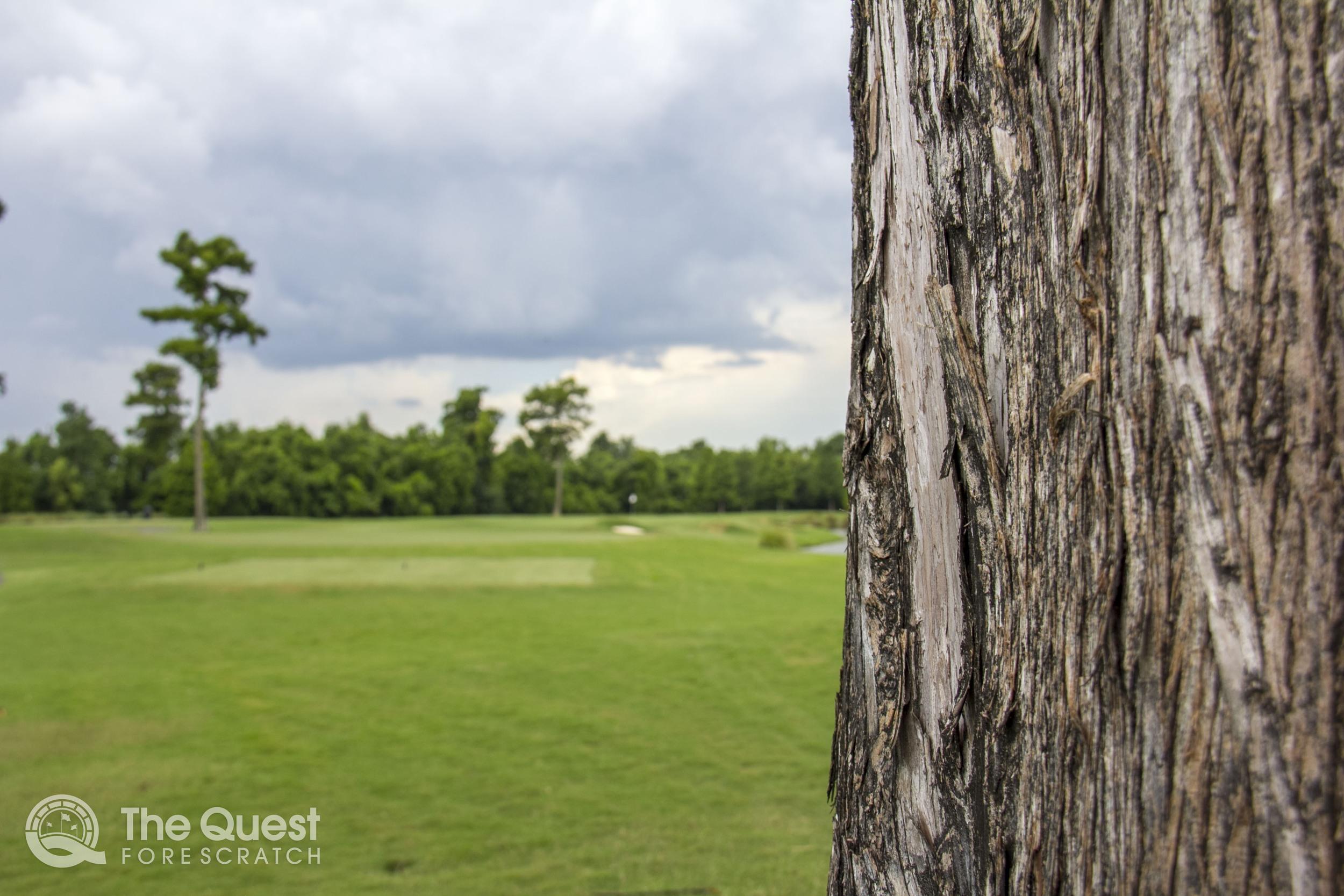 TPC Louisiana Hole 3