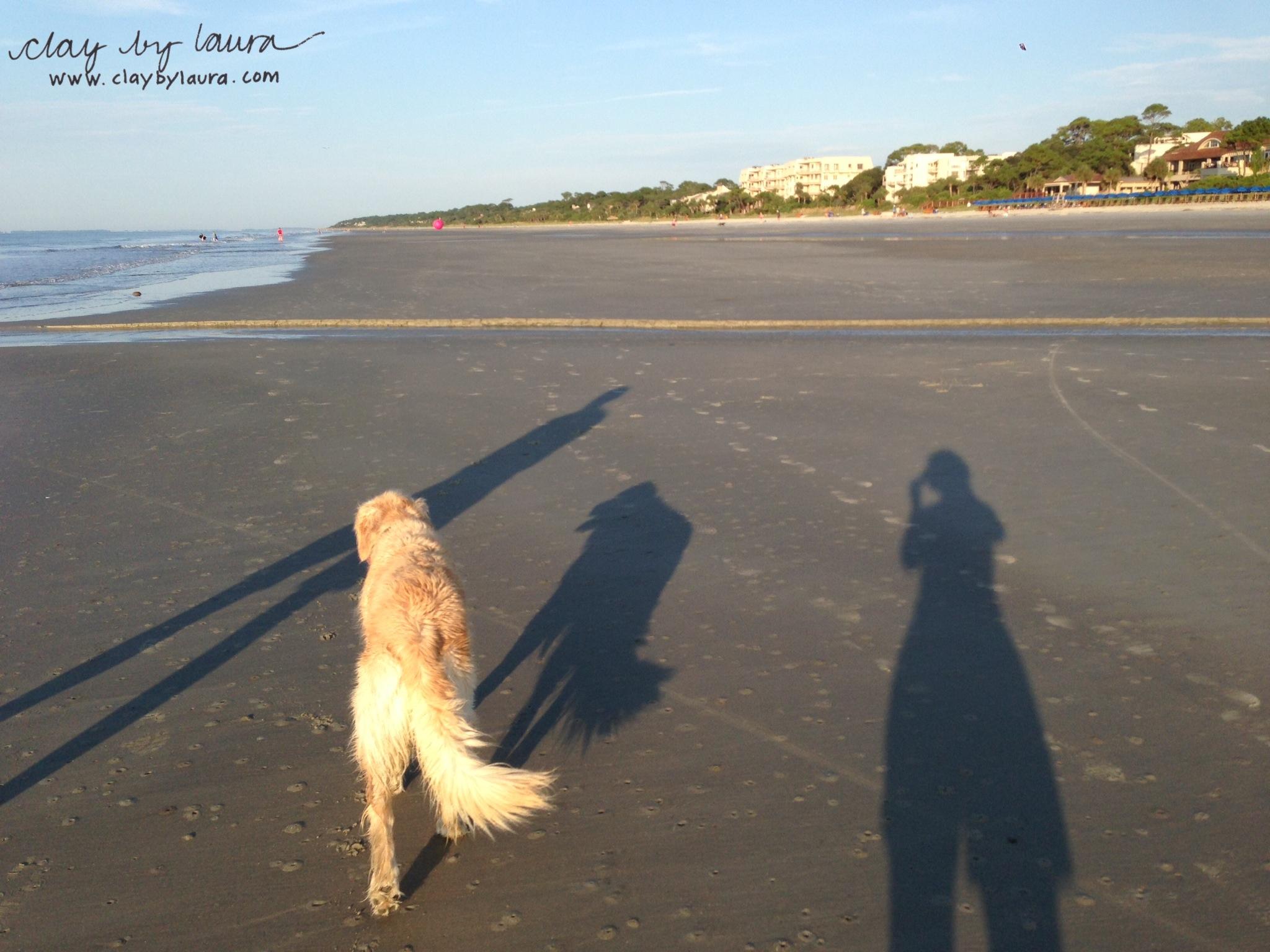 Early morning run, swim, walk!