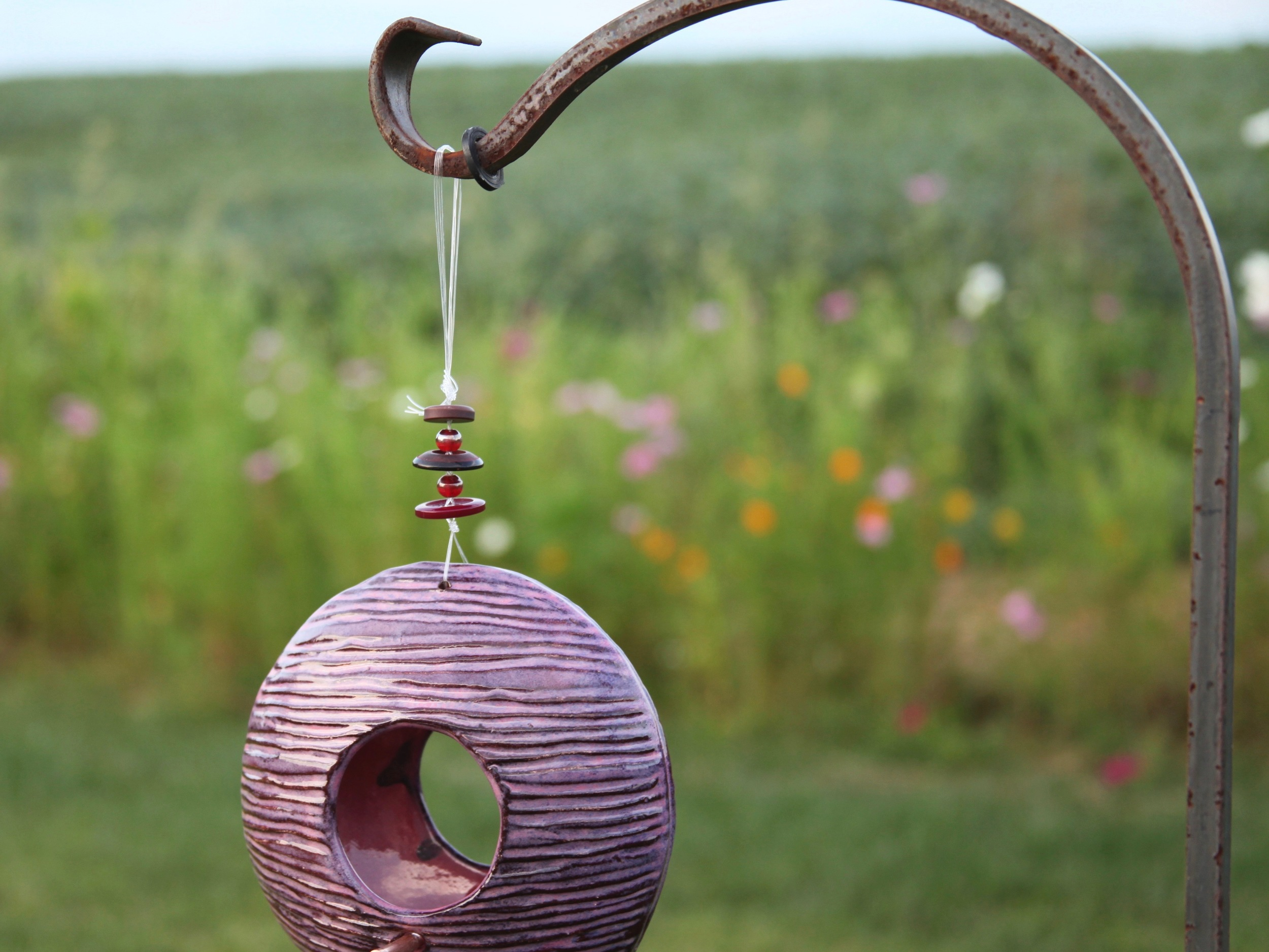 I love this photograph! My wildflower garden was in perfect background bloom for the bird feeder I create in the studio. Click on the photo to view the current colors available for your garden!