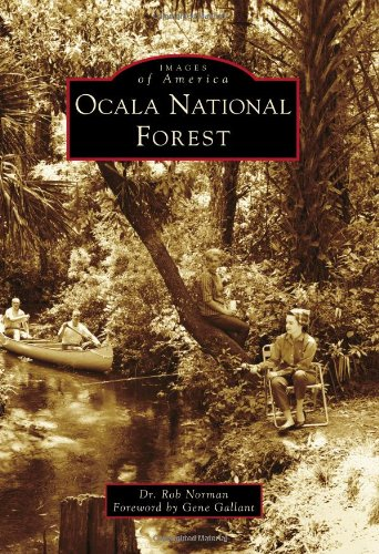 Ocala National Forest.jpg