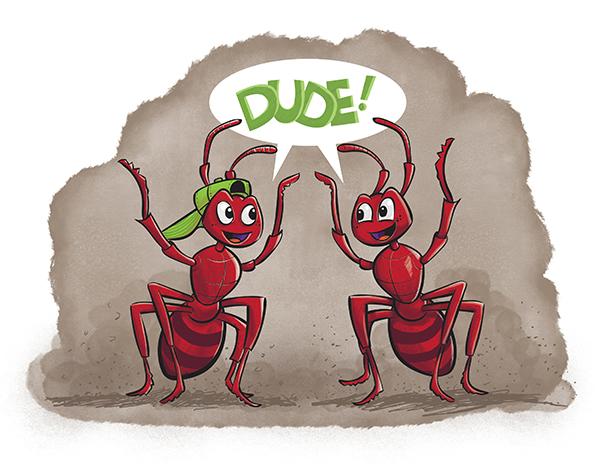 ants-final.jpg