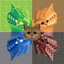 catgrid.jpg