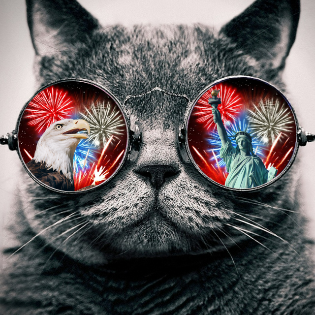 americacosmoscat.png