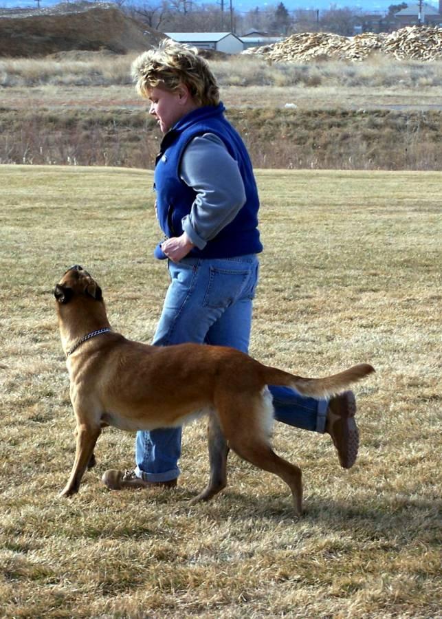 Bijou and Allison - jogging heel position.jpg