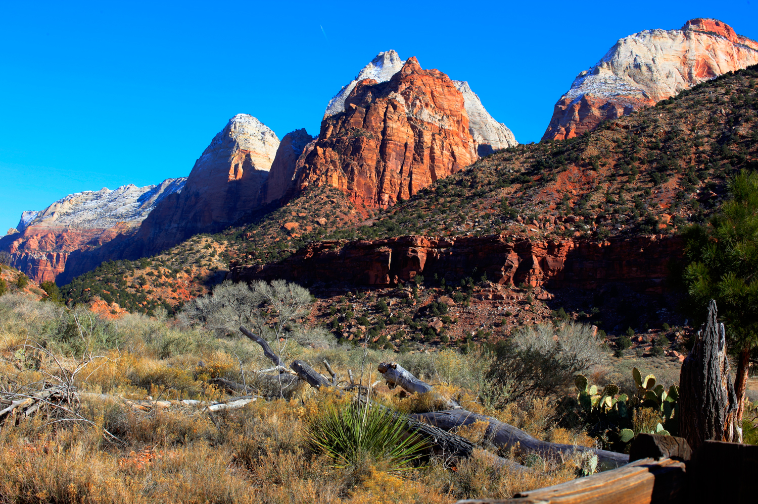 This image was taken at the beginning of Zion's National Park. The park is a wonder to see.