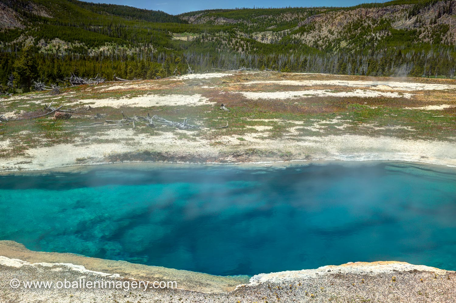 This beautiful blue pool is located across the road from Biscuit Basin.