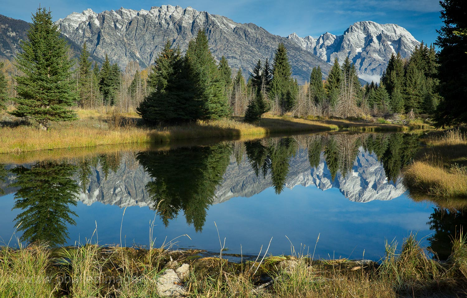 This images was taken near Schwabacher's Landing on a beautiful fall day.