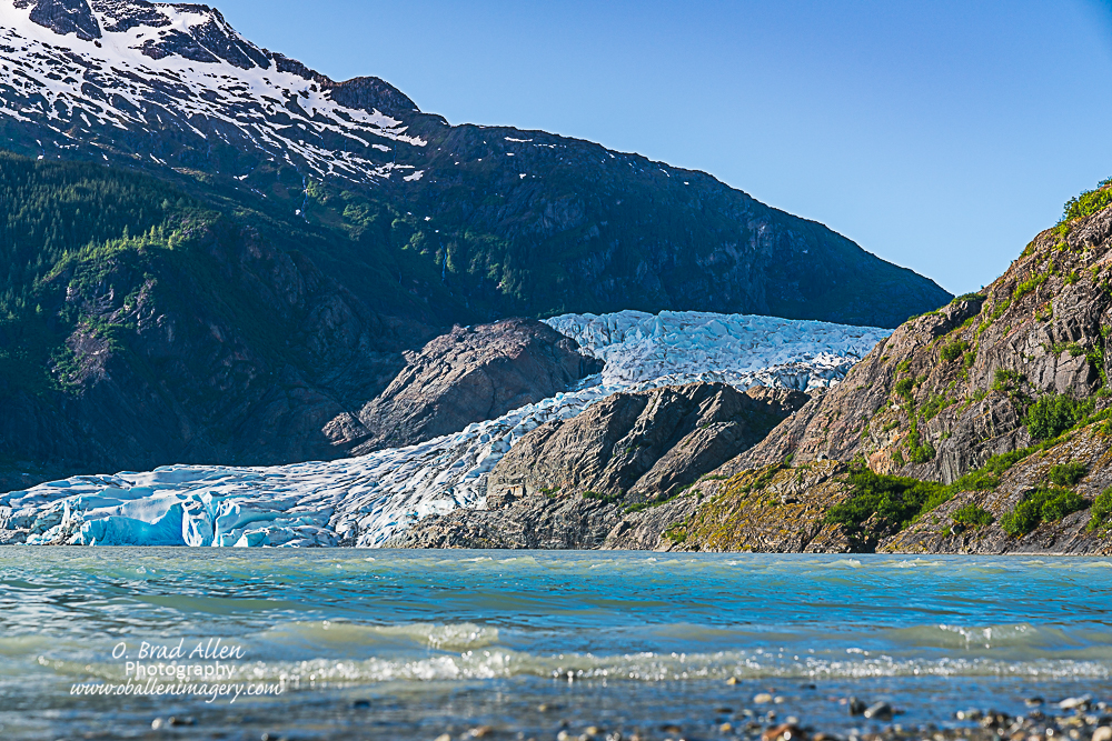 Mendenhall Glacier is probably one of the most famous glaciers and you can walk to within 300 yards of the face of the glacier.