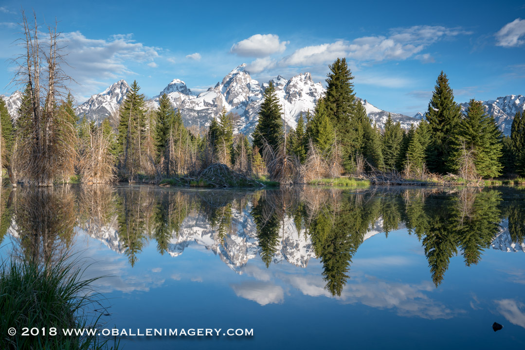 There are so many beautiful reflective areas along the Schwabacher area.