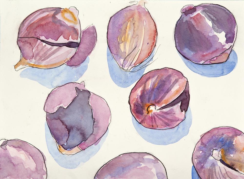 Still Life Onions