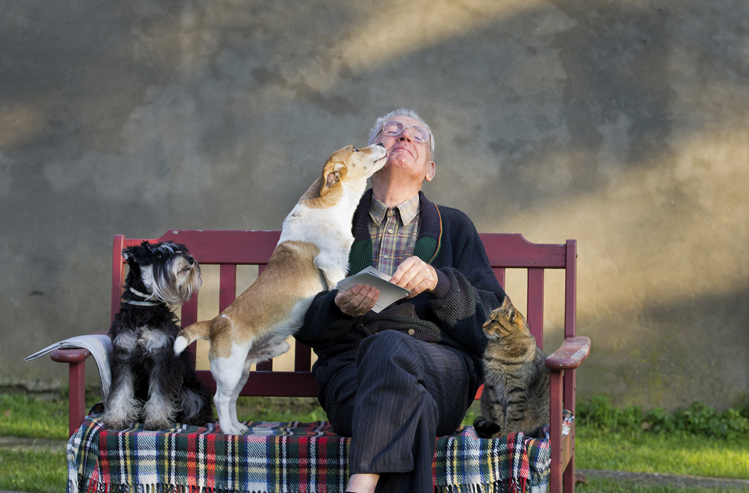 we deliver love  seniors with pets have 21% less doctor visits. we feed pets too