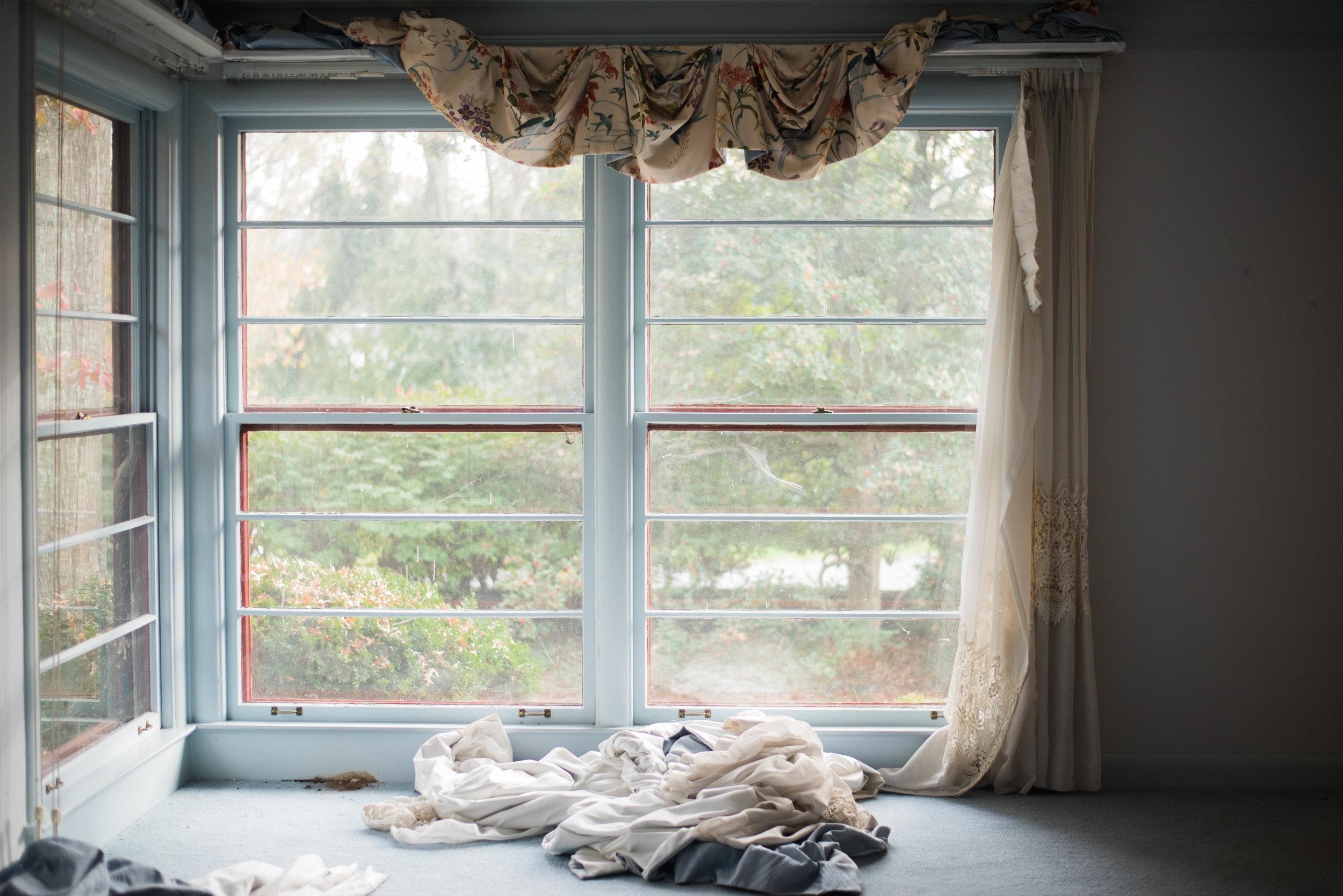 Untitled, Rachel Van Doren