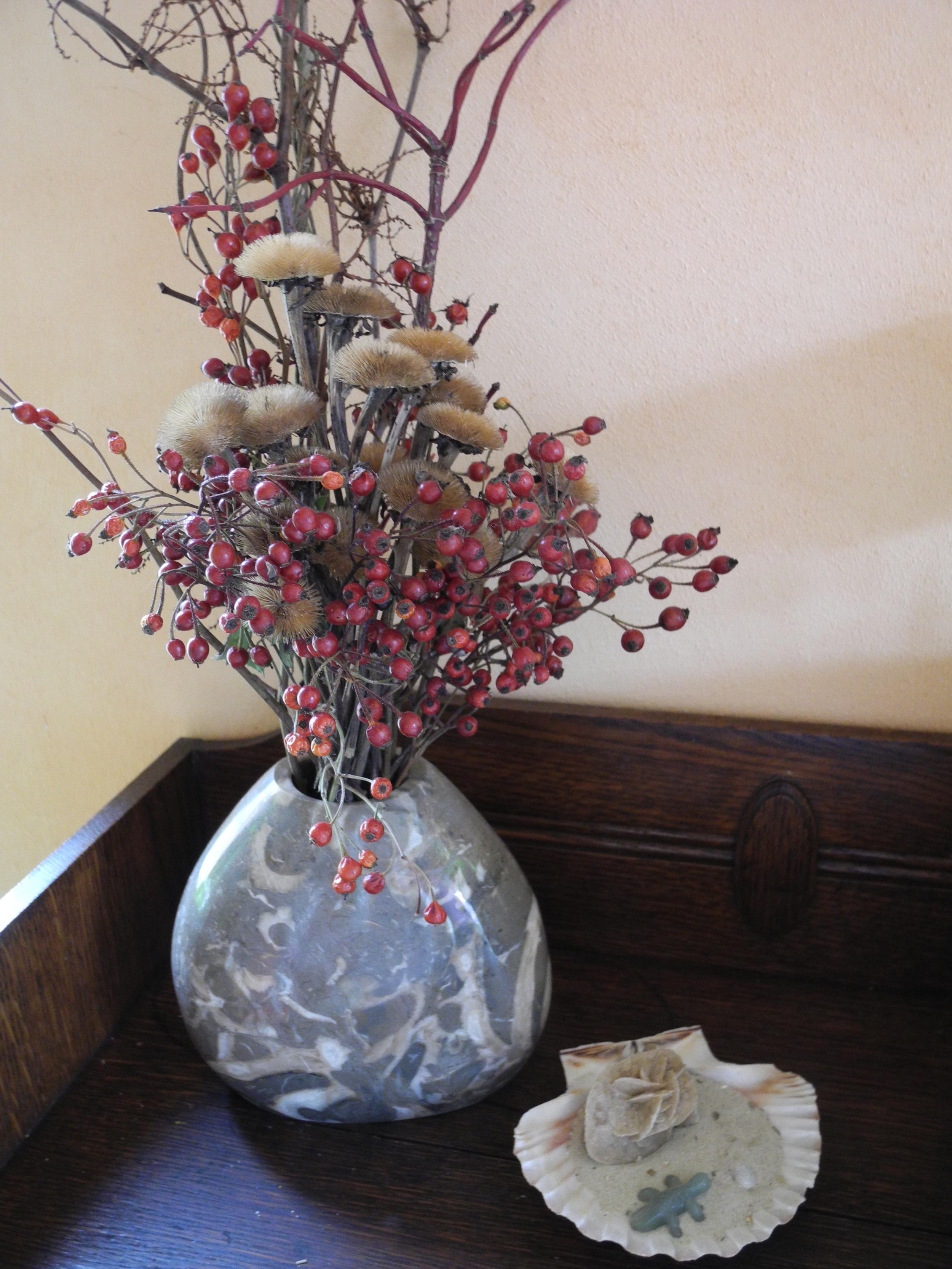 DSCN4284 Vase Actaeonellenkalk.JPG