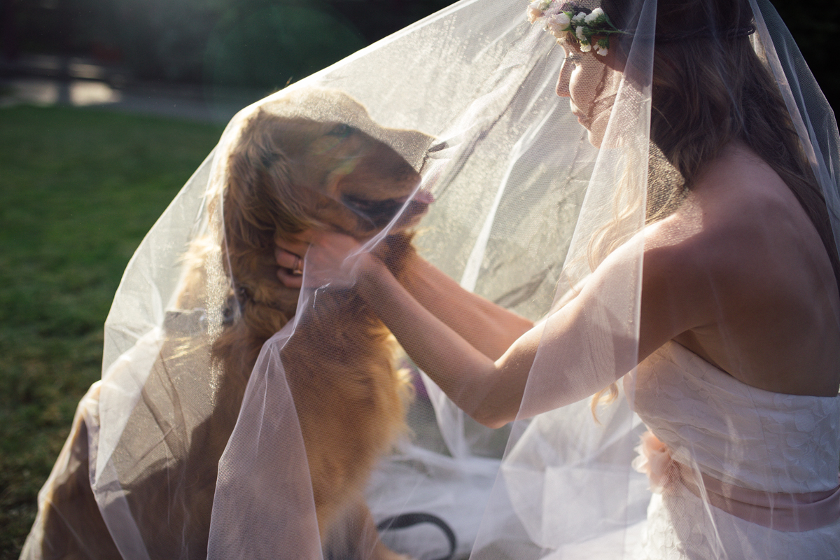 The Bride in her veil playing with a dog King Francis Park Forest Wedding ceremony The Guild wedding reception Vancouver Island