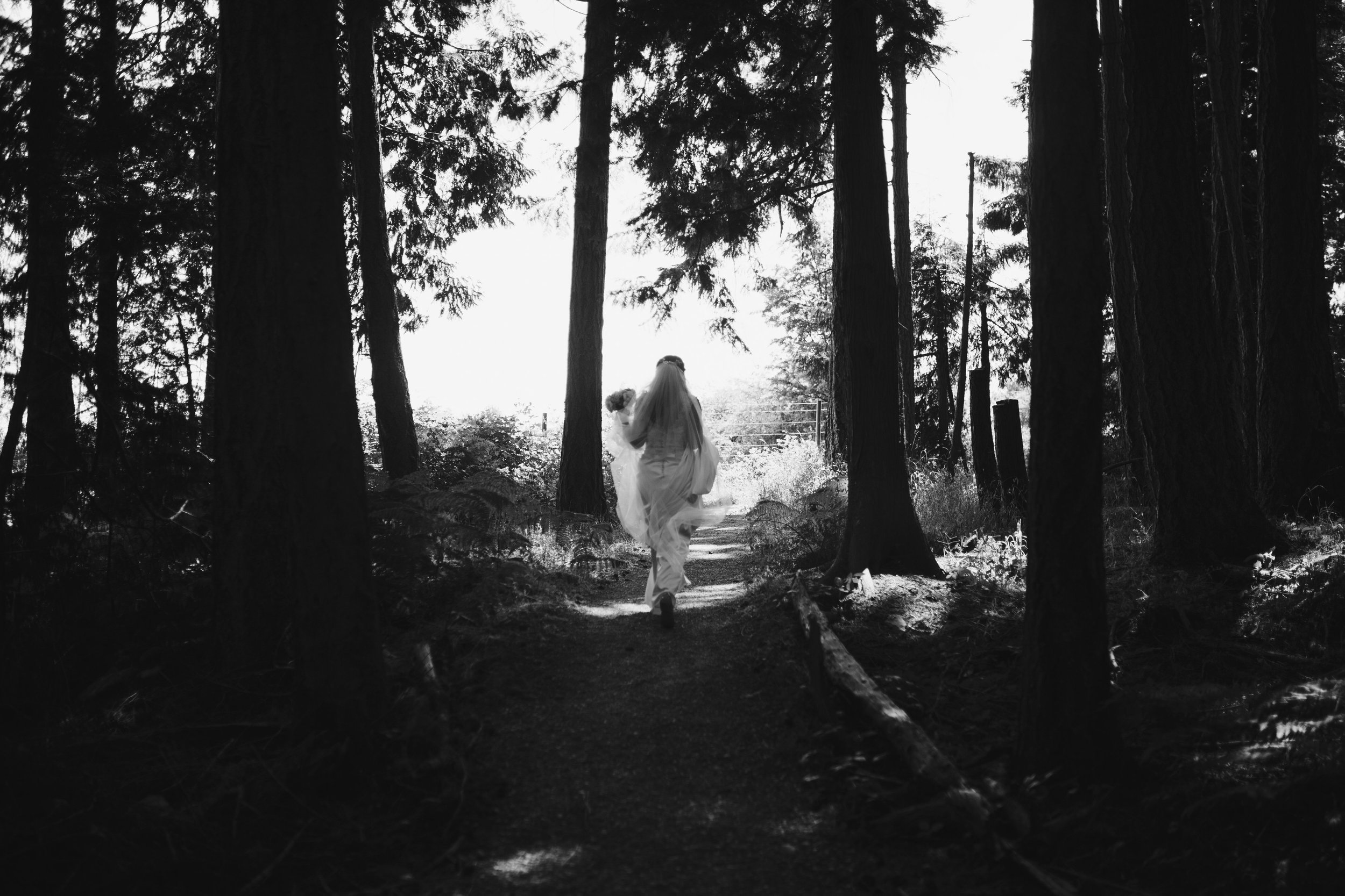a picturesque shot of the bride Forest wedding Tofino Sea Cider Vancouver Island
