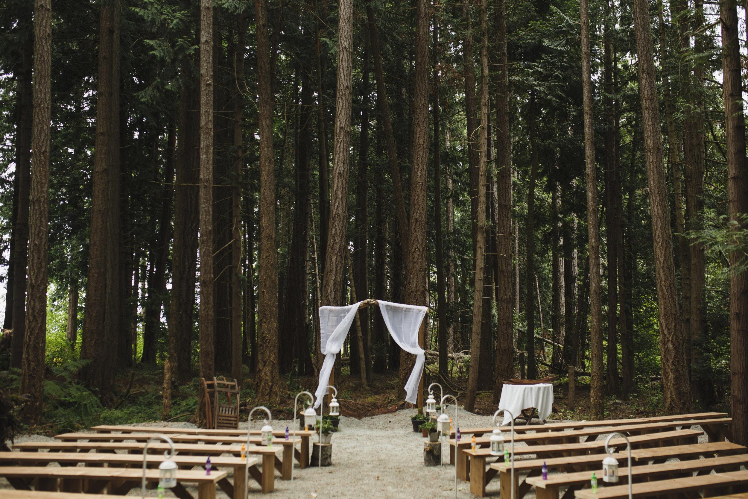 The altar Forest wedding Tofino Sea Cider Vancouver Island