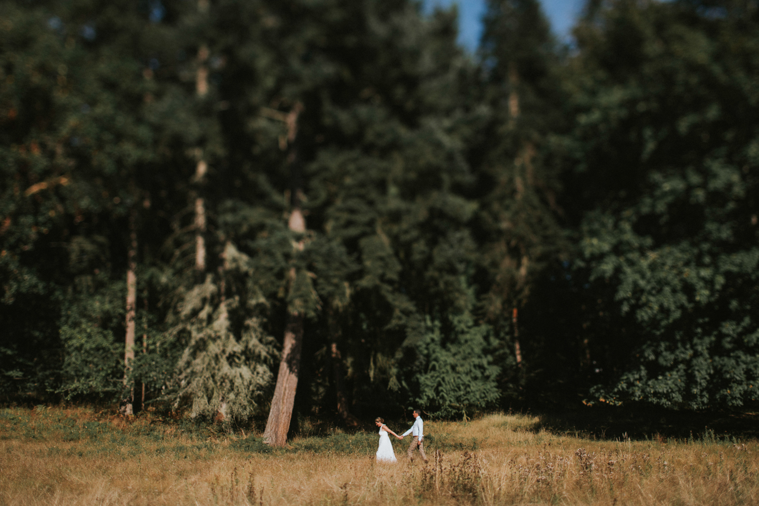 The newly wed Bride and Groom walking in the fields King Francis Park Forest Wedding Ceremony Vancouver Island