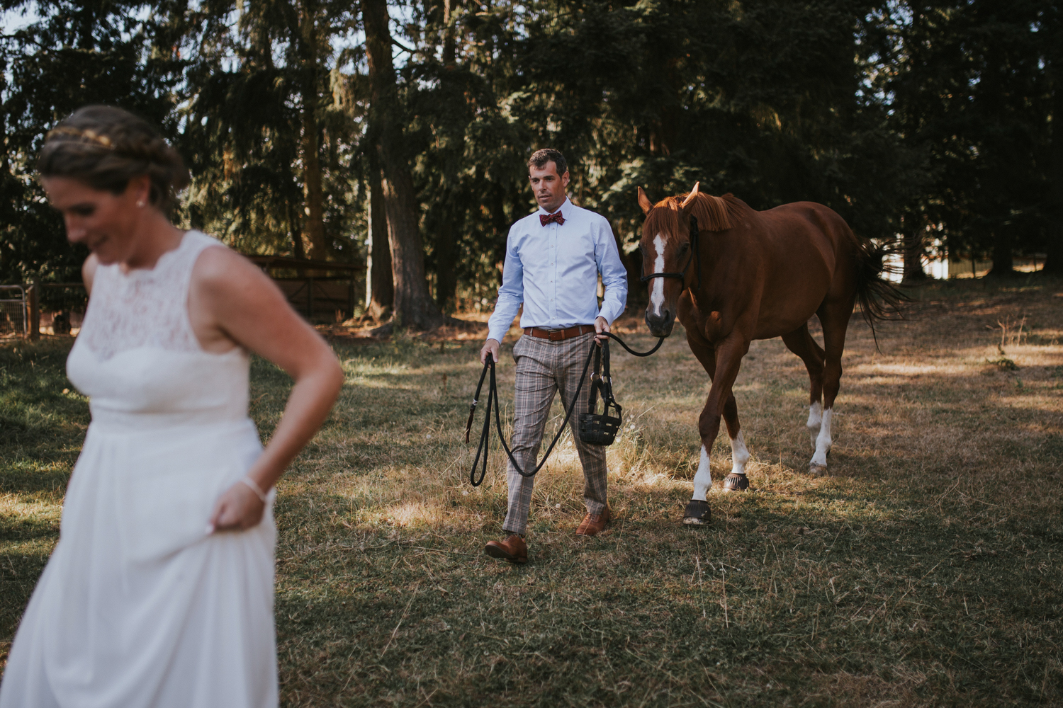 The Groom walking a horse with his Bride King Francis Forest wedding Vancouver Island