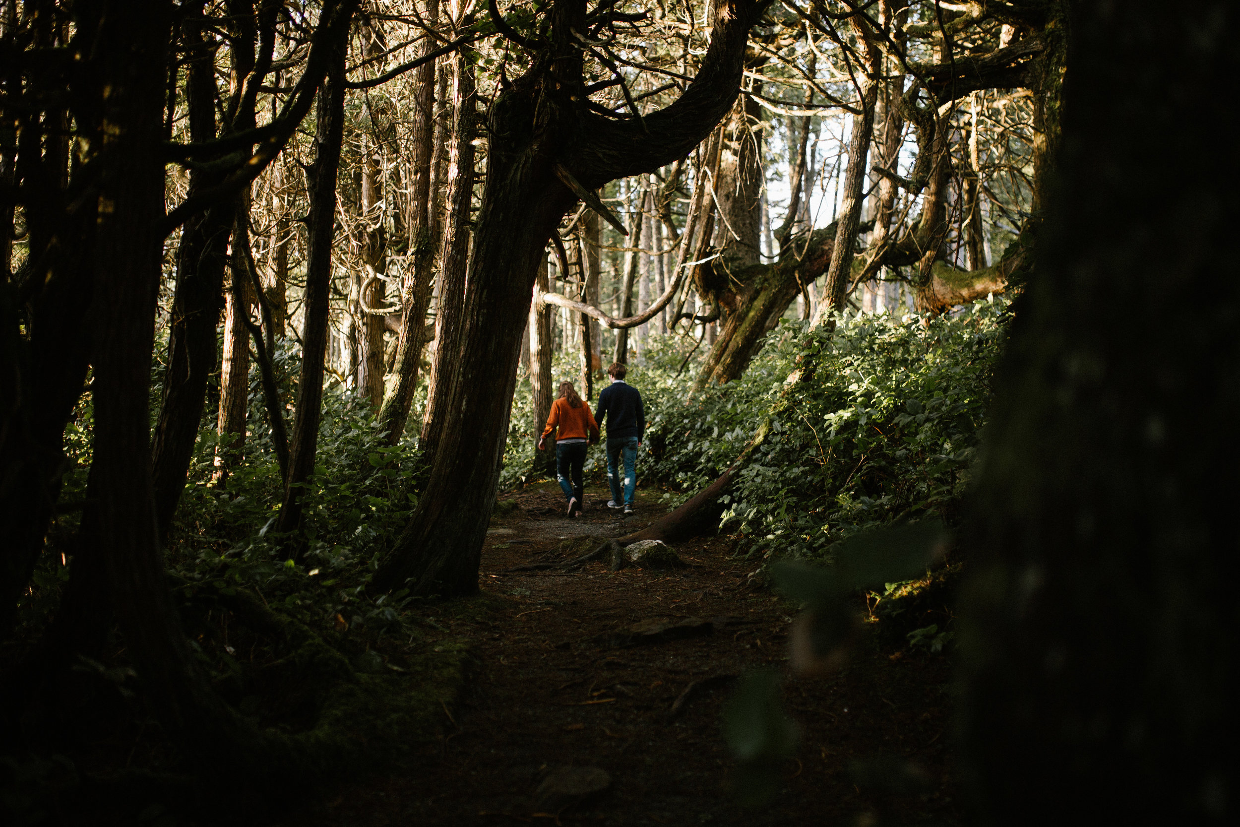Couple walking in the woods Botanical Beach, Juan de Fuca, Vancouver Island engagement