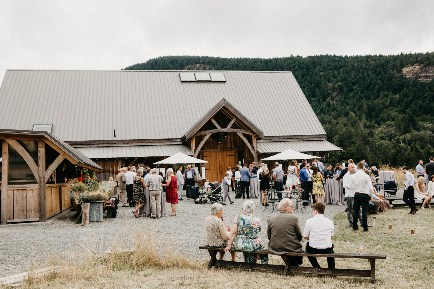 cocktail hour at Bird's Eye Cove wedding, Vancouver Island