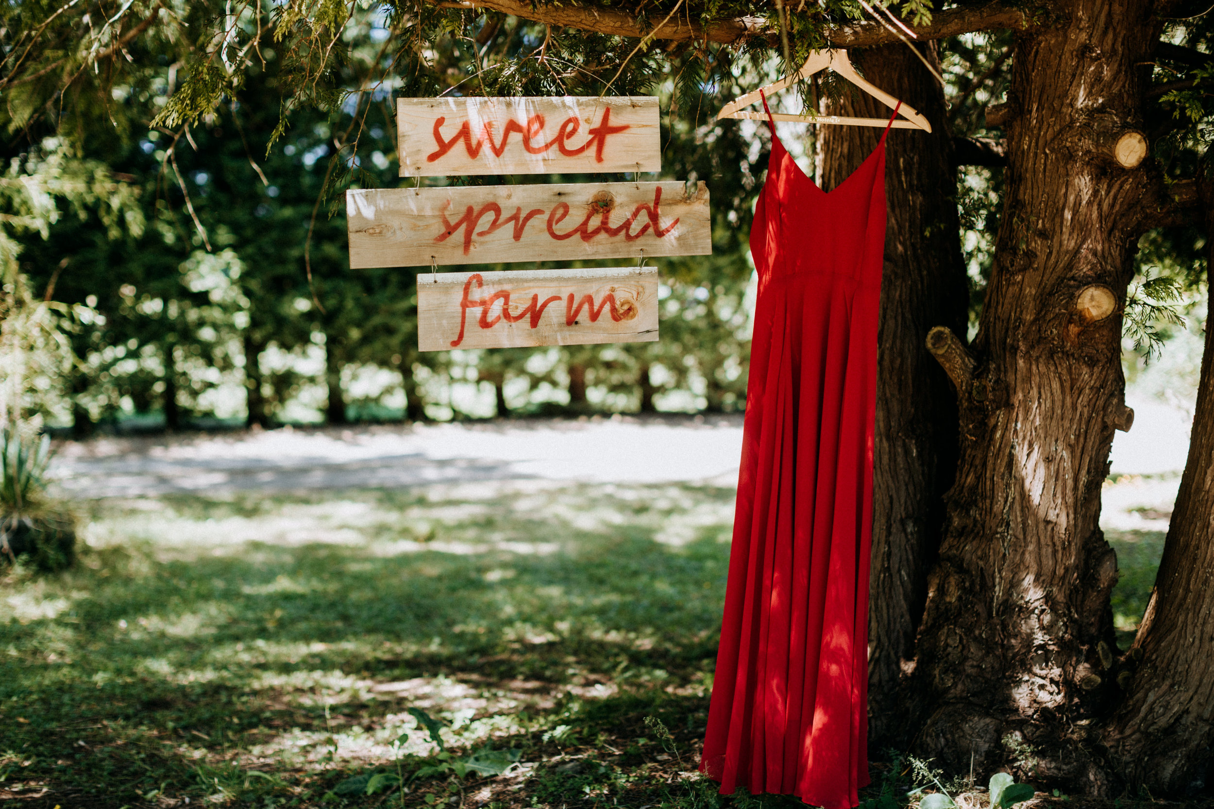 sweet spread farm with red wedding dress Courtenay Wedding Photographer