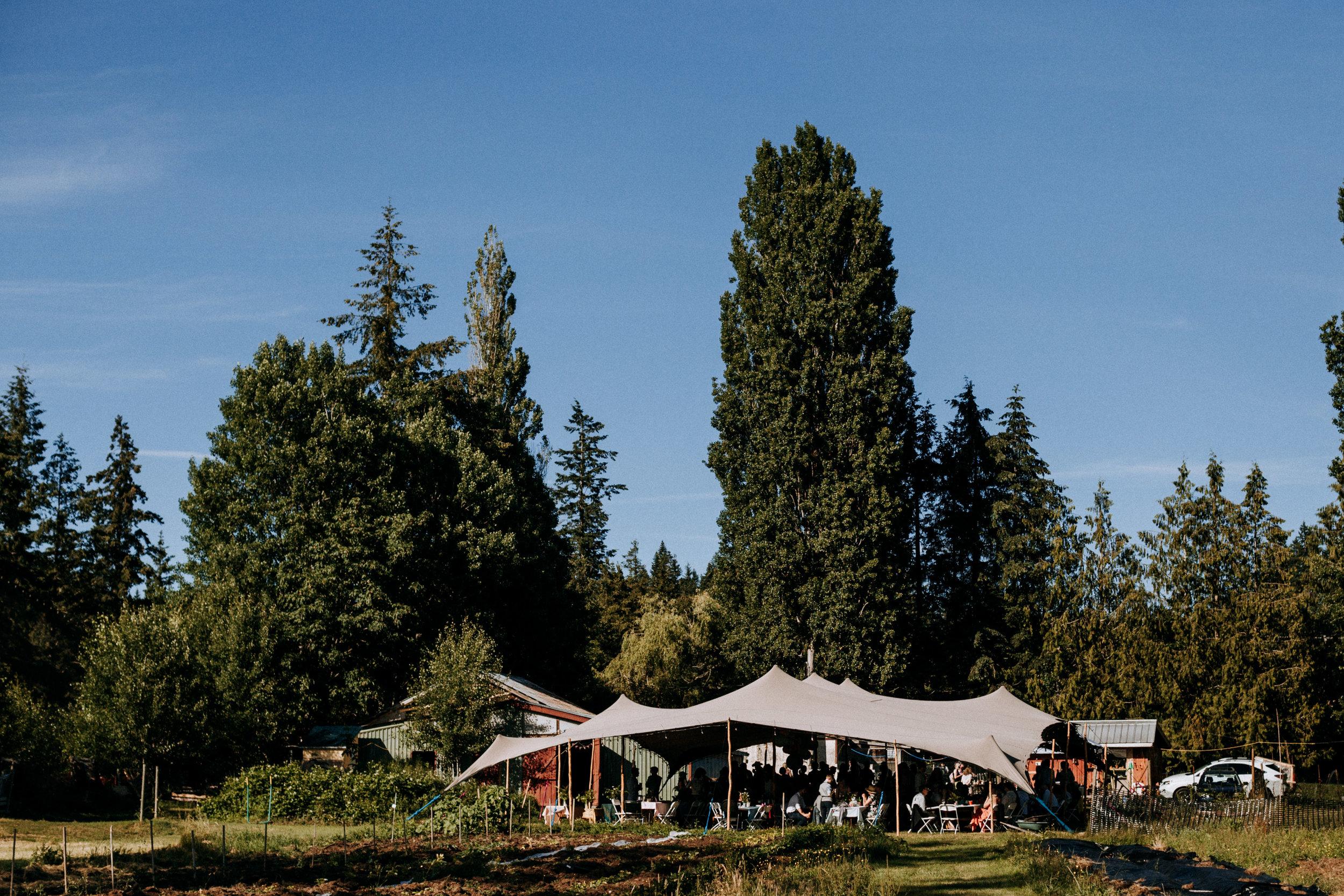 Reception Tent at farm wedding Courtenay Wedding Photographer