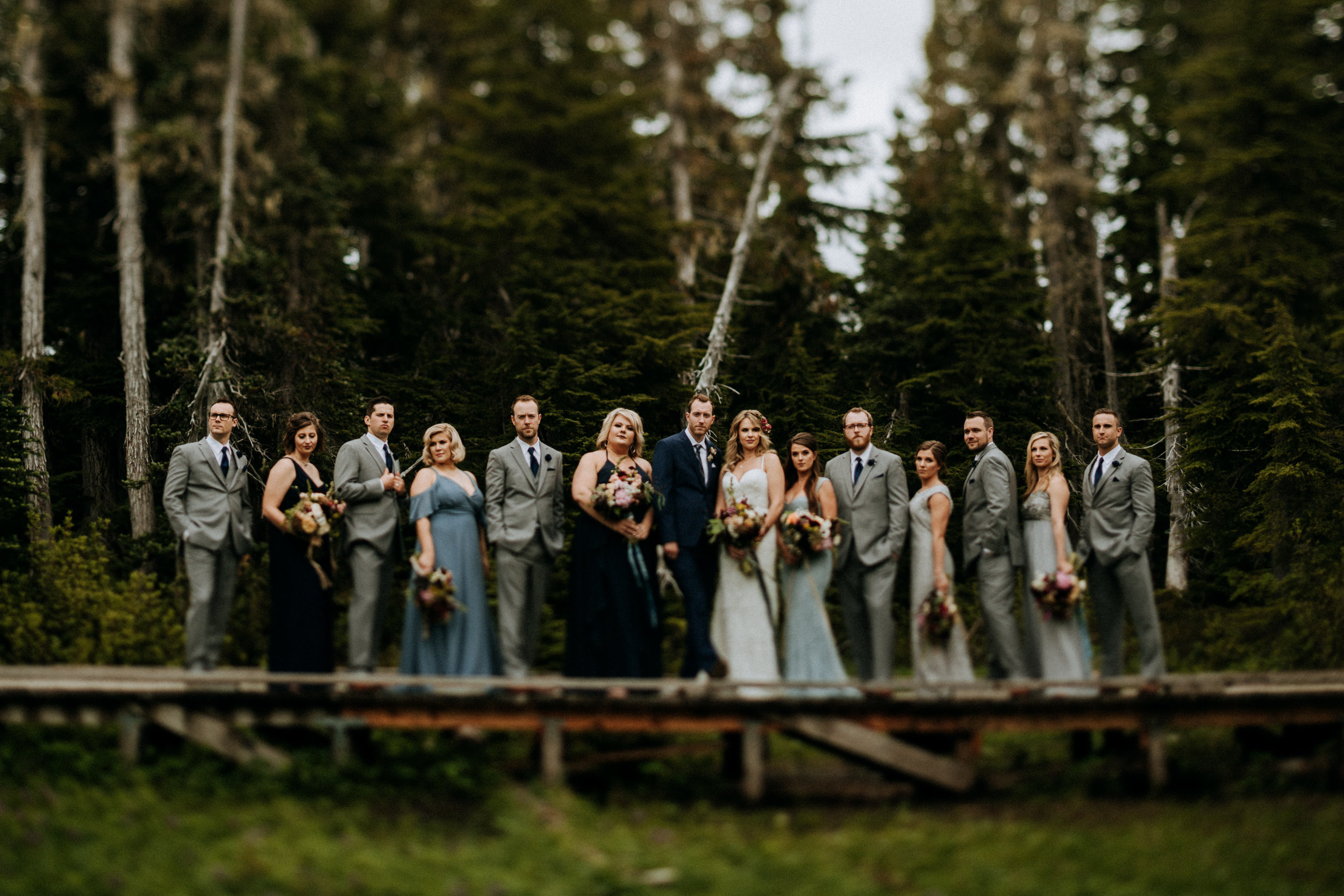 Bridal party at Paradise Meadows, Mount Washington Wedding photographer