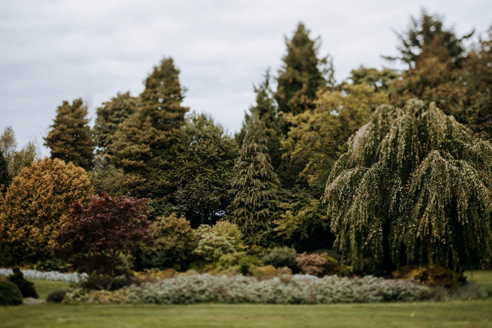 garden at Cecil Green Vancouver Wedding Photographer