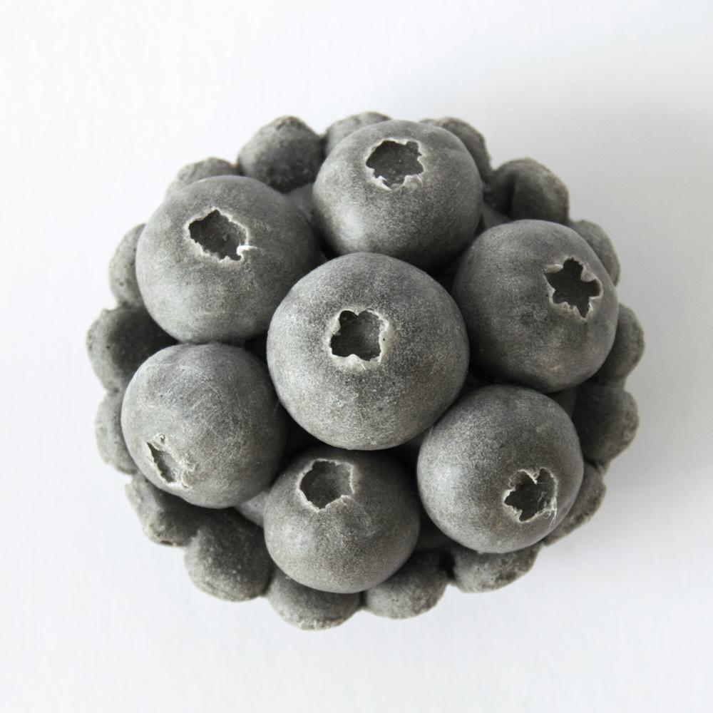 smerolla_blueberry_tartlet.jpg
