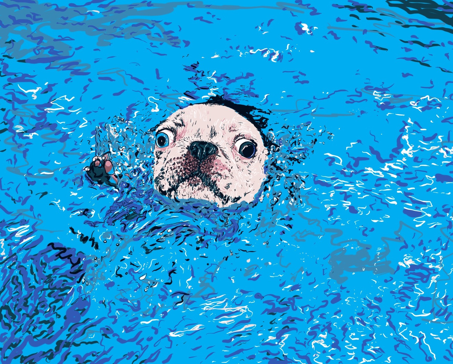 Swimming_Boston_terr.jpg