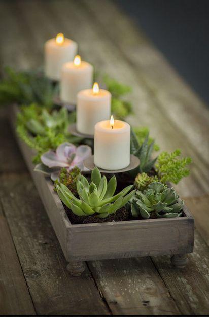 Succulent planter centerpiece