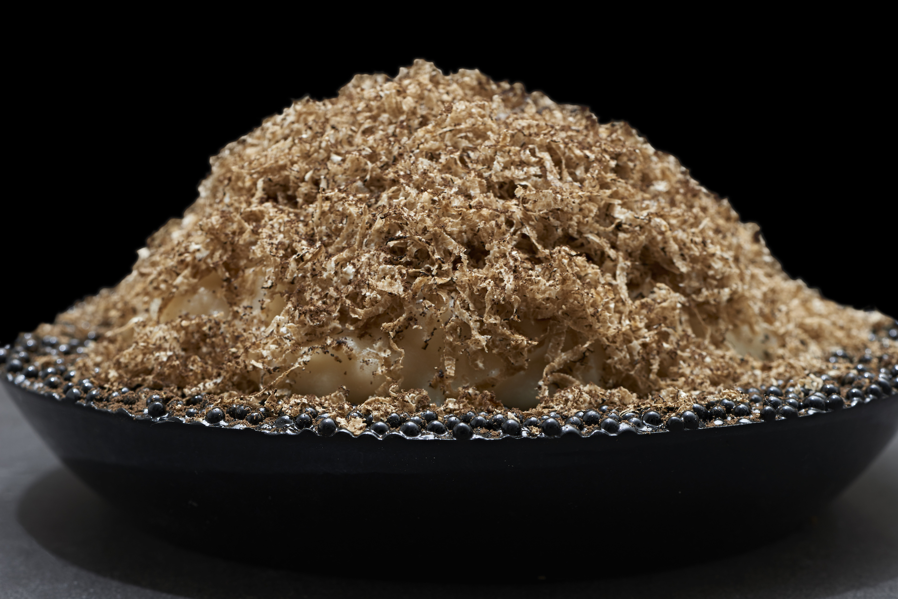Salt baked celeriac porridge with truffle, truffle oil and black trumpet mushroom powder by Kristian Baumann of 108 Restaurant, photo by Rein Janssen
