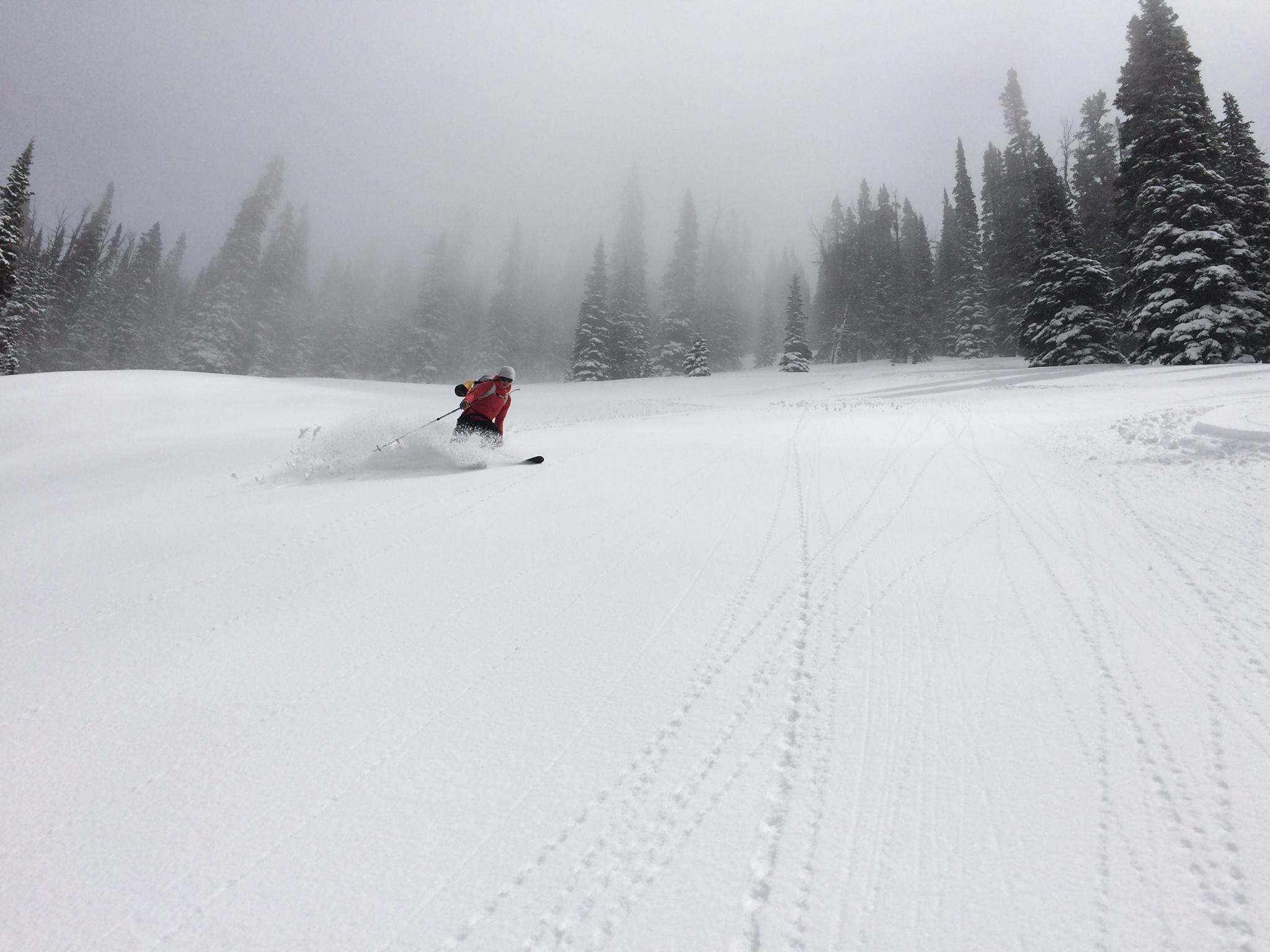Lizzie skiing in the backcountry.