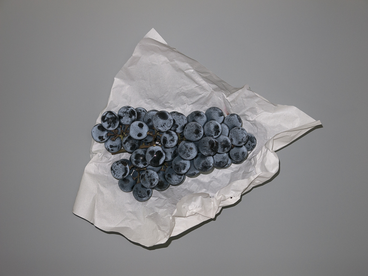 (VIDEO WORKS: Dumb Durational Piece) Grape Seed Grid Grapes, 2015, South Korea