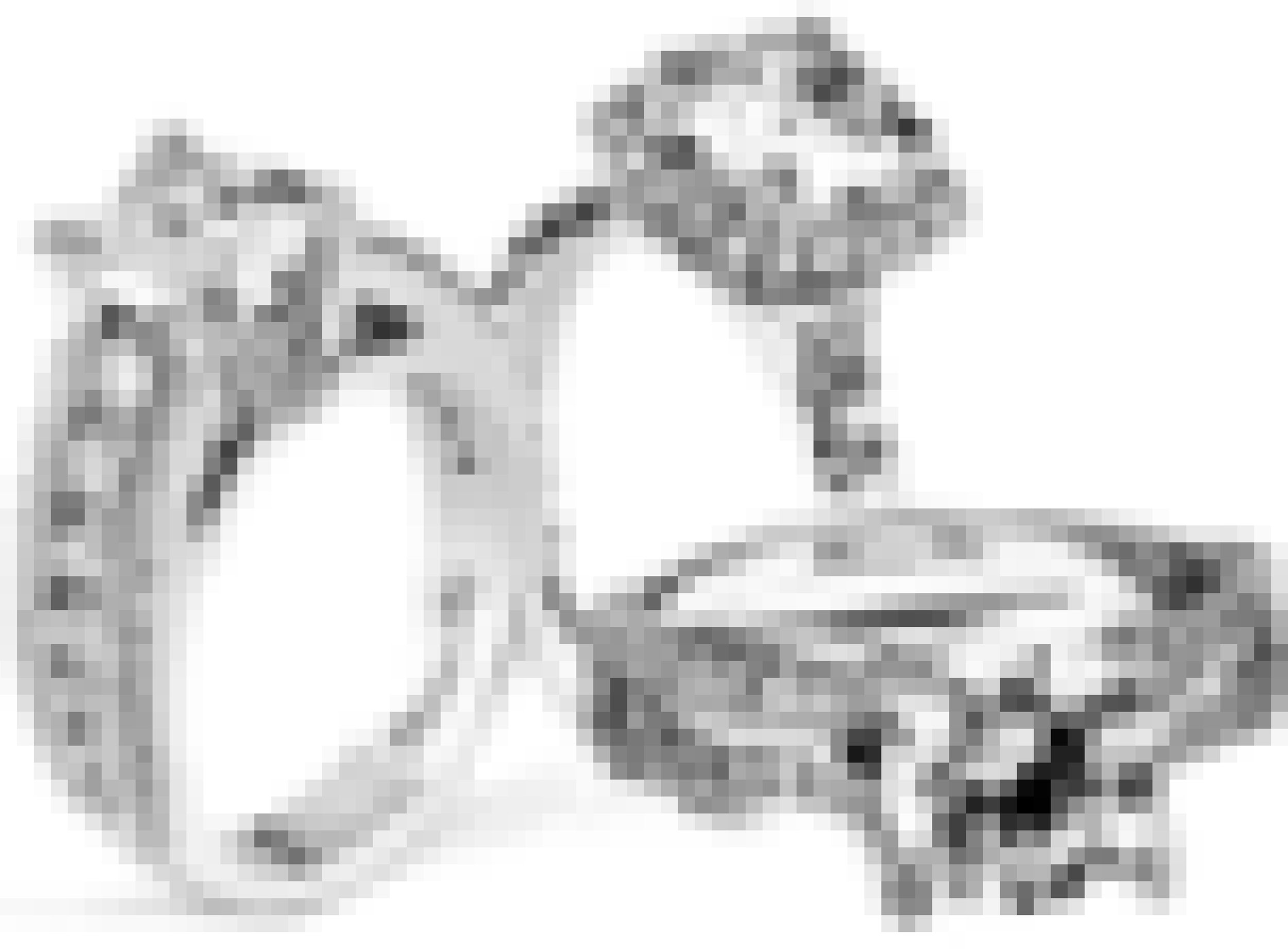 Ring Icon Ideal 15