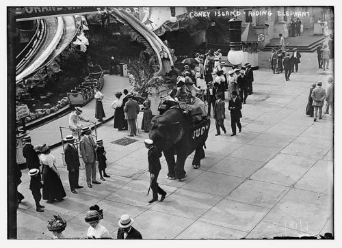 An elephant, apparently named Judy, gives a ride to a few (let's face it, probably unworthy) humans. Coney Island, June 18, 1911. ( Library of Congress )